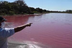 Lago se tiñe de rojo en Paraguay