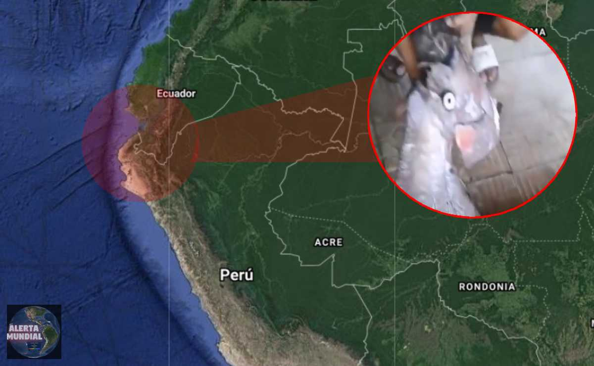 Pez remo aparece en Puerto Bolívar de Ecuador
