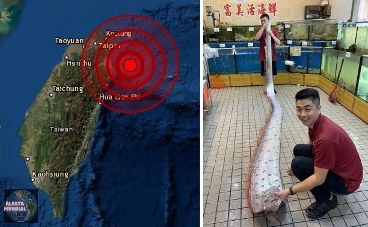 Sismo de Magnitud 6.2 sacude los edificios de Taiwan