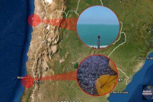 Peces varados en Canelillo y el color del mar cambia en Antofagasta de Chile