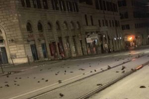 pájaros muertos caen del cielo en Roma