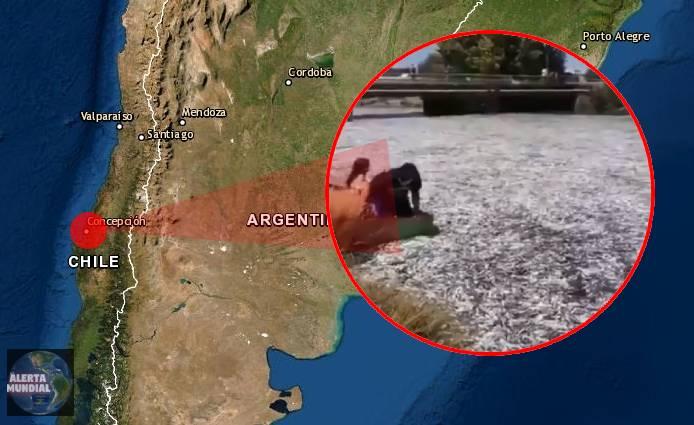 Nuevamente toneladas de peces vararon en Chile (VIDEOS)